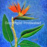 MOLTEN GOLD BIRD OF PARADISE ACRYLIC ON CANVAS 12 X 15
